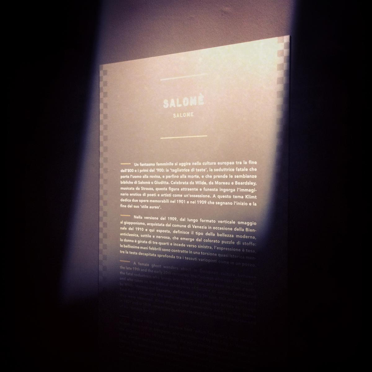 KlimtAlle-Origini-di-un-Mito-002
